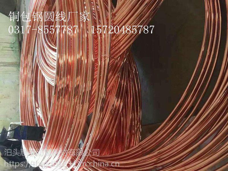 福建惠丰铜包钢接地圆线 图片 厦门铜包钢接地圆线规格欢迎您的采购