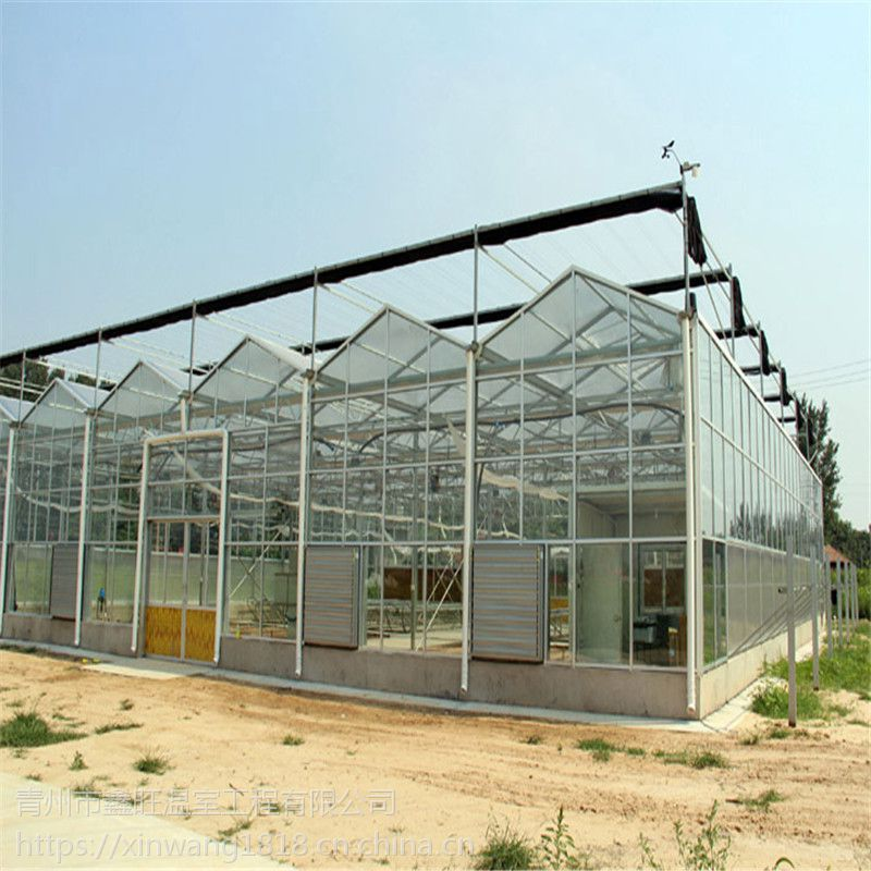 山东玻璃温室大棚建设工程