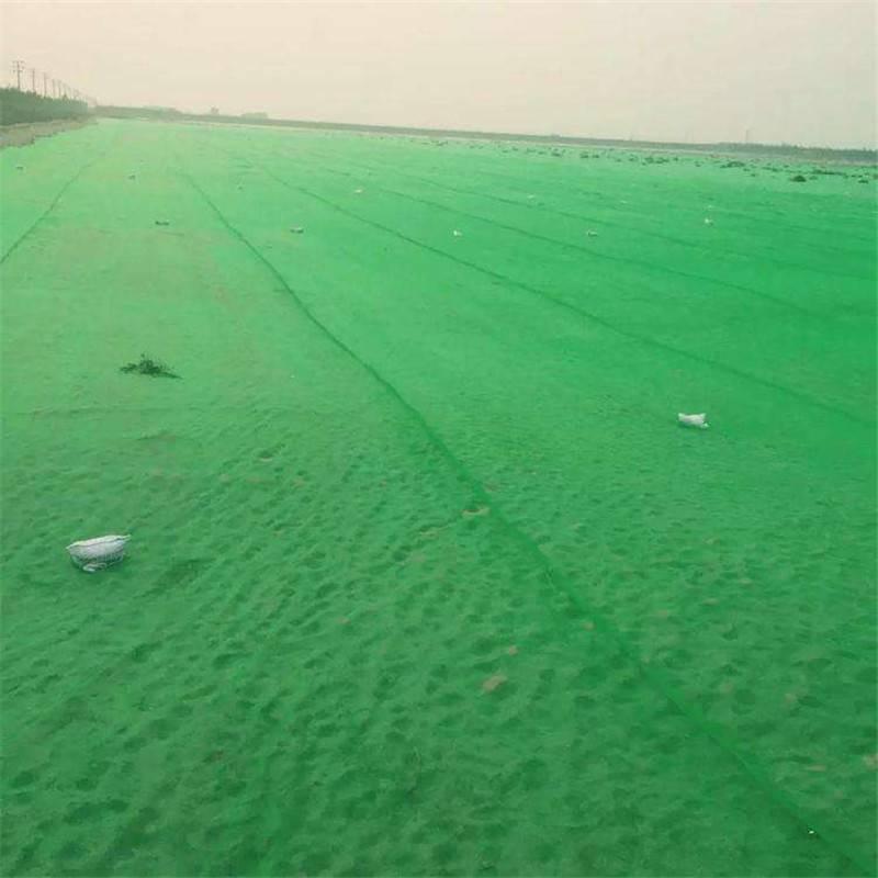 工地防尘覆盖网 环保防尘盖土网价格 工地施工盖土网