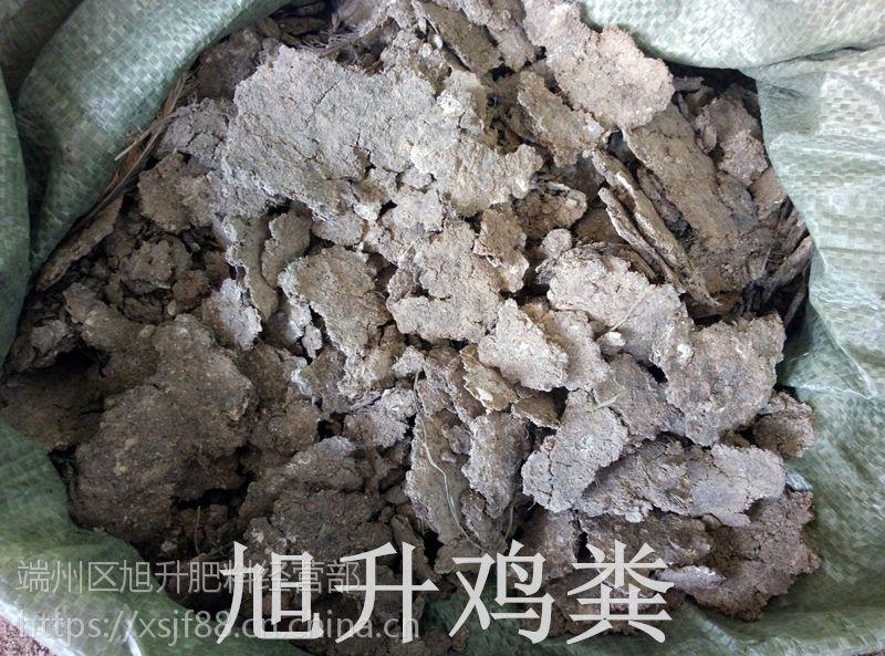 广西桂林纯干无杂质鸡粪有机肥,桂林纯干鸡粪哪里有人畜粪便批发