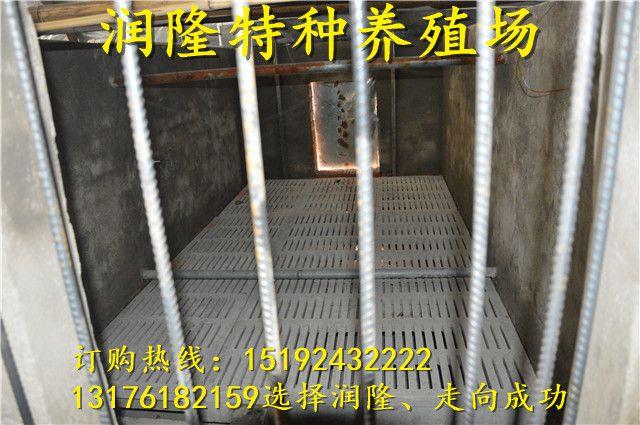 http://himg.china.cn/0/4_429_234720_640_425.jpg