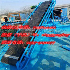 上海 节省人力的输送机厂家 加料斗花生粟子上料输送机