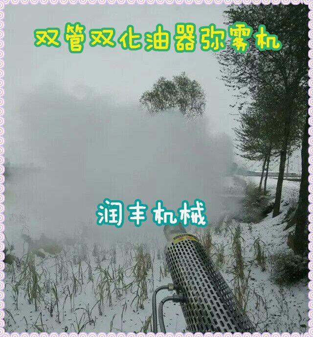 青州弥雾机 农田果树打药机 脉冲保药效弥雾水雾机润丰