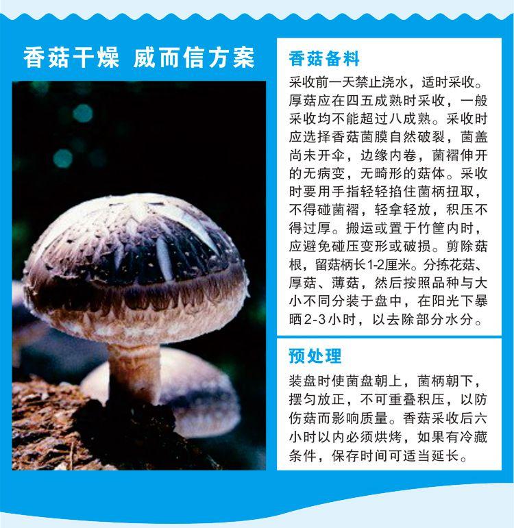 四川成都 威而信3匹高温型嵌入式香菇干燥机WRH-300G厂家直销