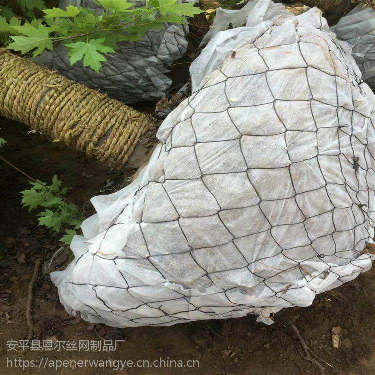 圆形树根网兜,绿化挂铁丝树根网,广东勾花包树根网