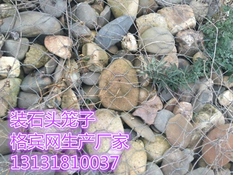 护坡固滨笼多少钱一平米