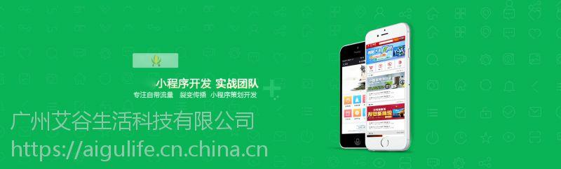 广州小程序制作开发广州艾谷科技软件开发项目多
