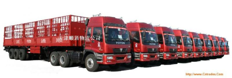 http://himg.china.cn/0/4_459_235116_800_271.jpg