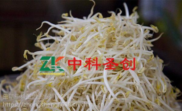 山西豆芽机生产设备,全自动豆芽生产线