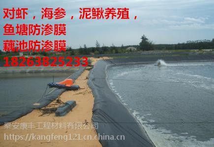 新闻联播#韩城鱼塘养殖防渗膜厂家--兴平化工厂污水池防渗膜有限公司