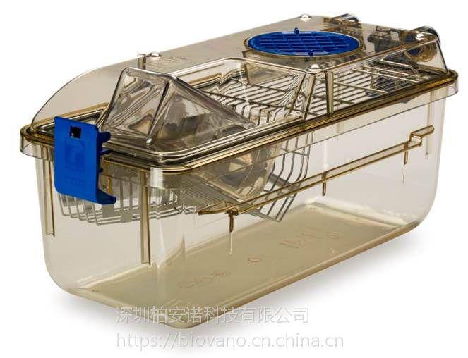 供应意大利Tecniplast大小鼠独立通气笼IVC SPF级,大小鼠