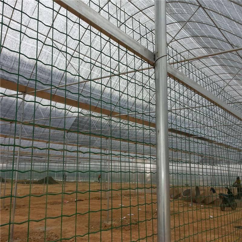 养狗围栏网 养鸡铁丝网围栏 荷兰网护栏