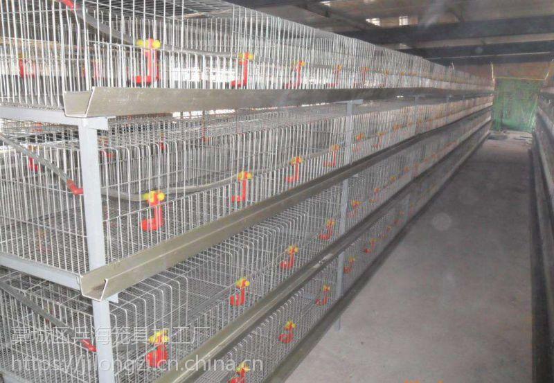 乌兹别克斯坦坦采购鸡笼子,电镀锌小鸡笼子,层叠式育雏笼可养320只鸡,也可加工定做