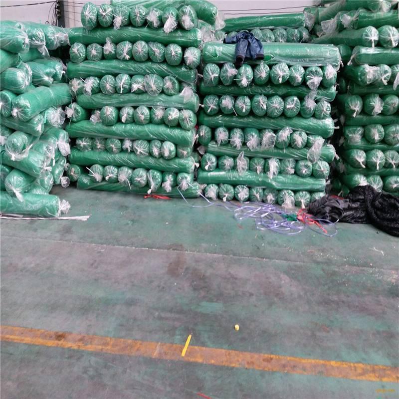 盖土网价格 绿色防尘网 裸土地面绿化网