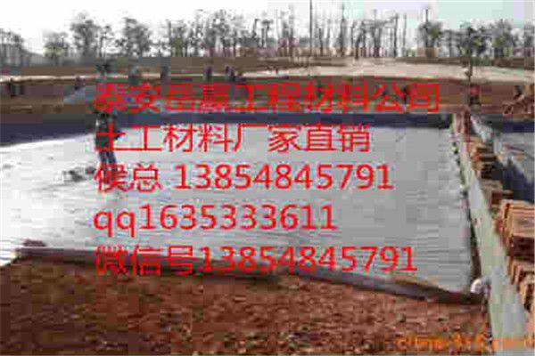 http://himg.china.cn/0/4_472_238008_600_400.jpg