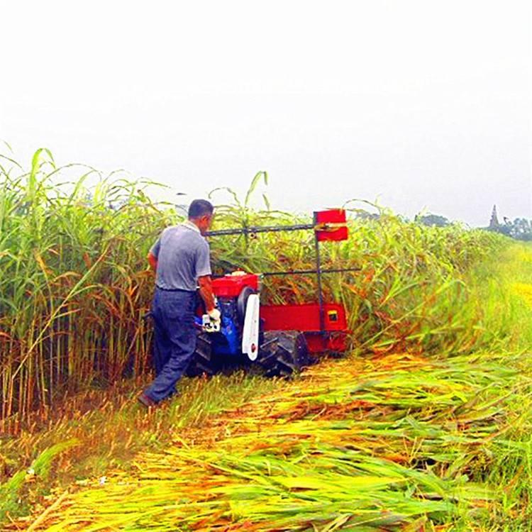 环保野生牧草收割机 整齐不凌乱割杆机