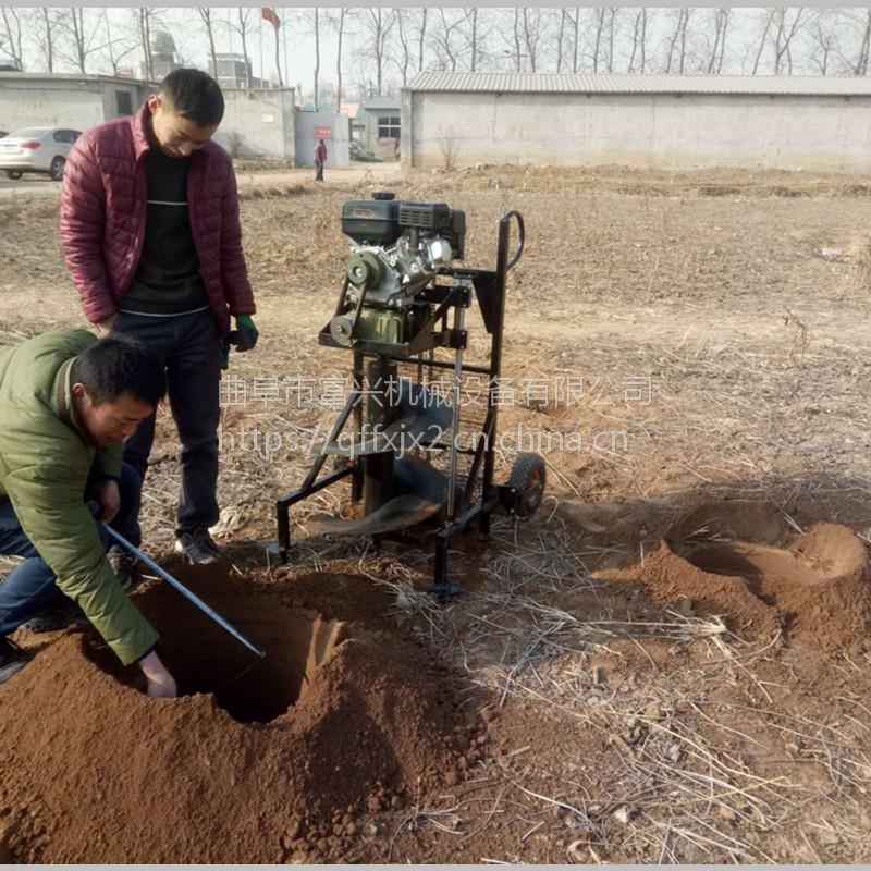 双人便携式钻窝机厂家 富兴柚子果园小直径施肥打孔机