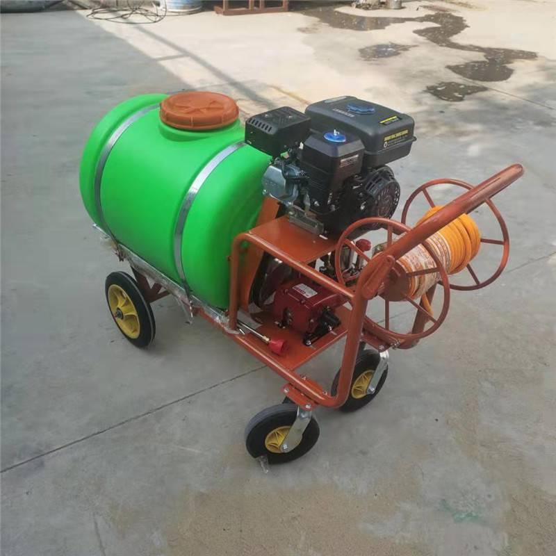 园林高压喷雾打药机 启航拉管高压手推式喷雾器 汽油打药机价格