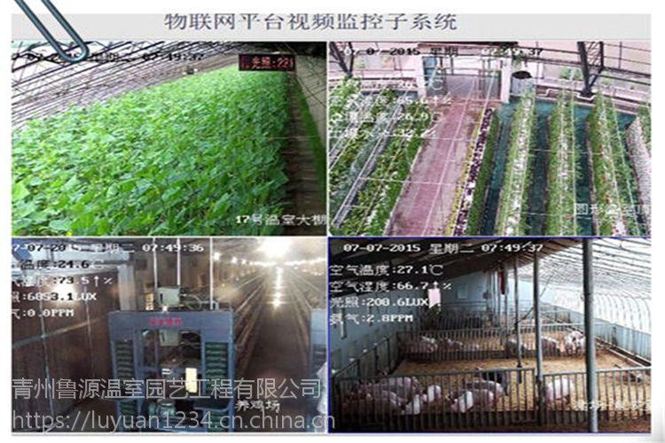 江苏德兴光伏温室太阳能发电3万平米厂家高配报价