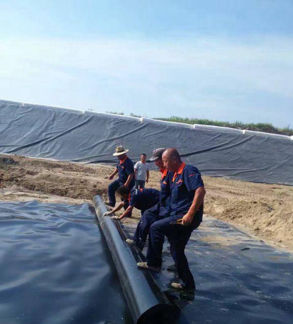 专业生产鱼池防渗膜 HDPE土工膜制造厂家