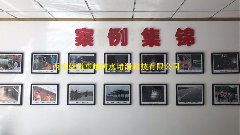 中国防水堵漏行业龙头企业-西安专业防水堵漏厂家-西安蓝箭卓越防水堵漏公司