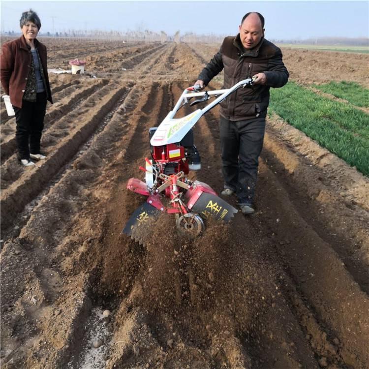 生姜黄烟种植培土机 农田手扶汽油开沟机
