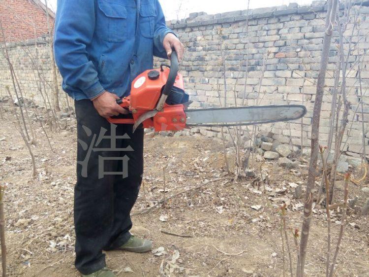 挖树机优势 挖树机大图 浩发