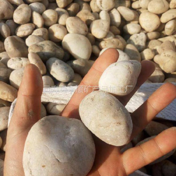 5-8厘米纯白色鹅卵石 河北石家庄永顺纯白色鹅卵石厂家直销