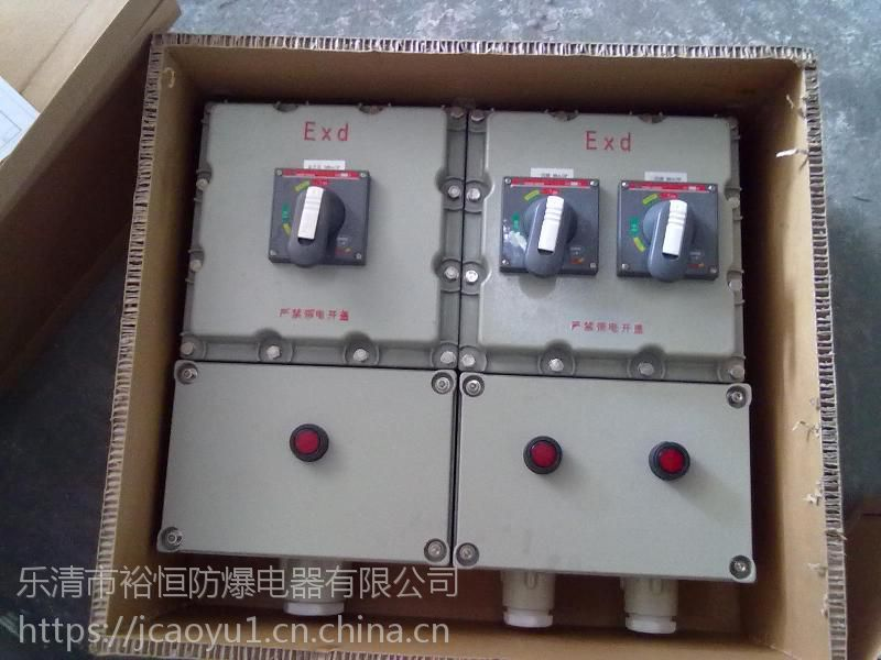 BXM- 防爆动力(照明)配电箱 乐清裕恒防爆厂家直供