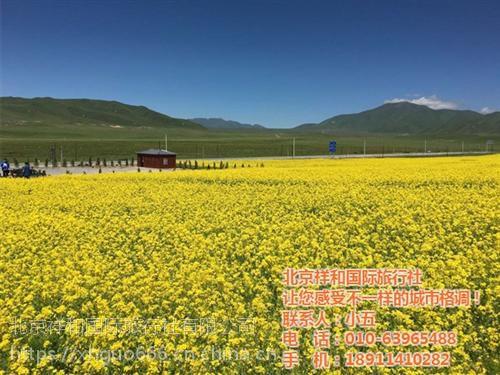 北京祥和国旅(在线咨询),石景山高端游,高端游去哪好