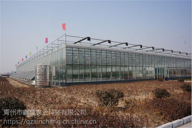 甘肃白银大型园林生态玻璃餐厅生态酒店7米型建造厂家
