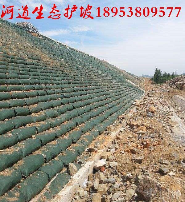 http://himg.china.cn/0/4_509_239214_600_657.jpg