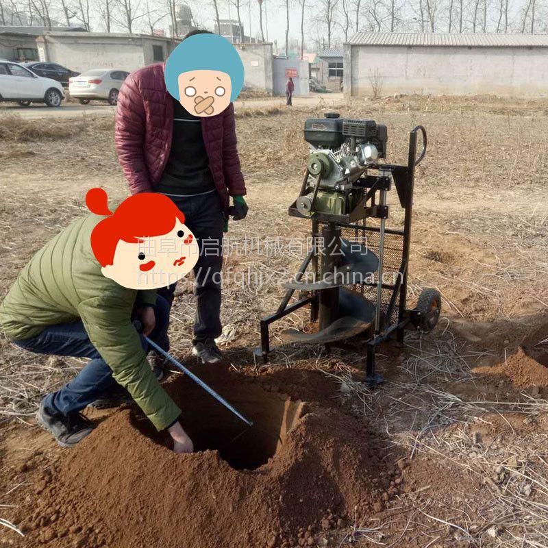 衡阳汽油挖坑机 汽油手提式挖坑机 启航手提式双人地钻挖洞机