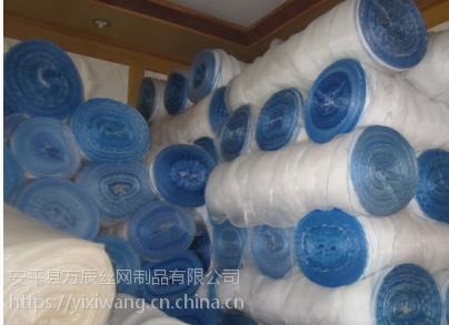 专业生产防护网 白色防虫网 防虫加密网40目