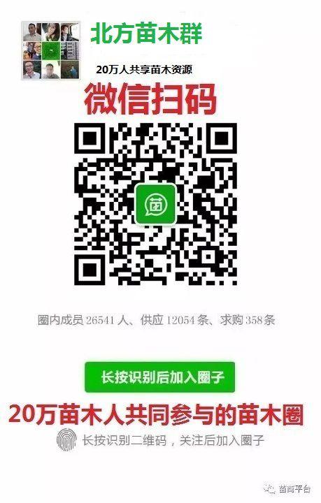 http://himg.china.cn/0/4_513_235872_459_720.jpg