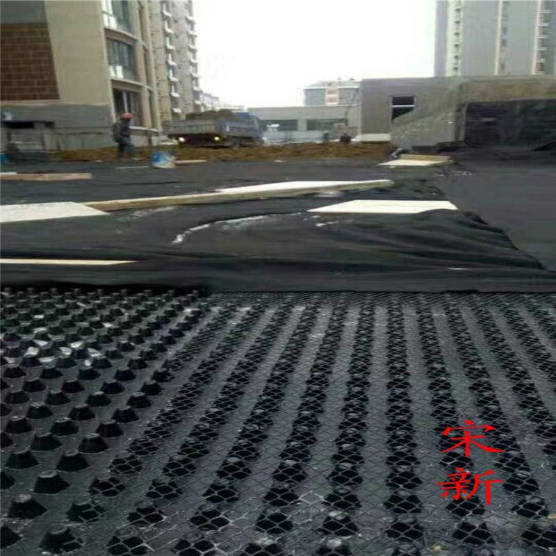 H20mm聚乙烯塑料排水板 车库顶板防渗 防穿刺