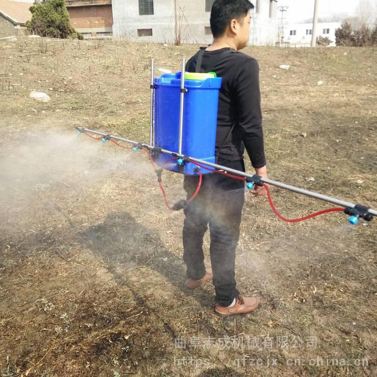 志成牌家用电动喷雾器 20L背负式电动打药机 农用高压喷壶厂家