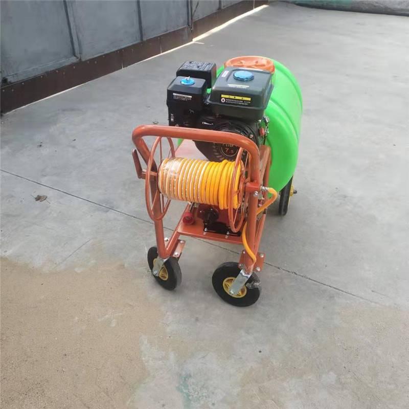 大马力汽油喷雾器 消毒杀虫喷雾器 启航牌手推式汽油打药机价格