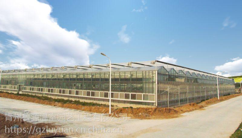 湖南常德饮食观赏玻璃温室大棚5.5米、30cm抗雪型承建公司