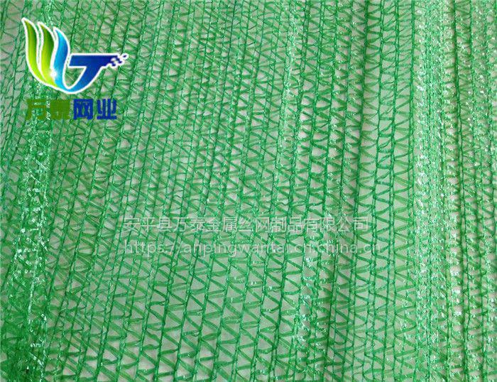 工程绿化防尘网 聚乙烯盖土网 河南盖土网厂家