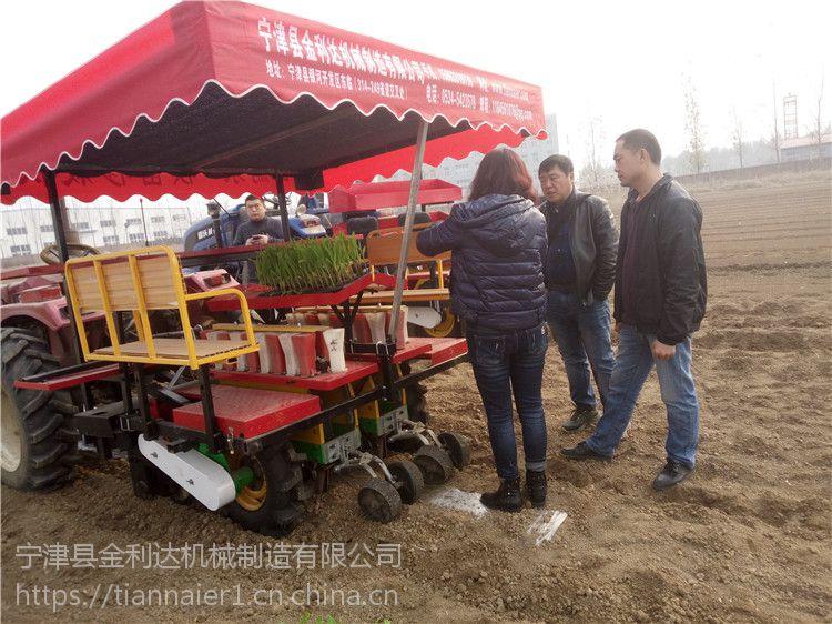 玉米移栽机结构合理高产高效造型美观山东田耐尔您的