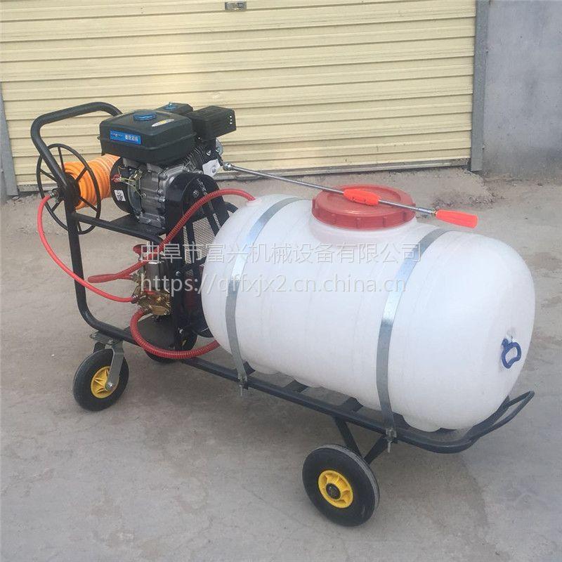 拉管式喷雾器 富兴牌公共场所消毒喷雾器 打药机价格