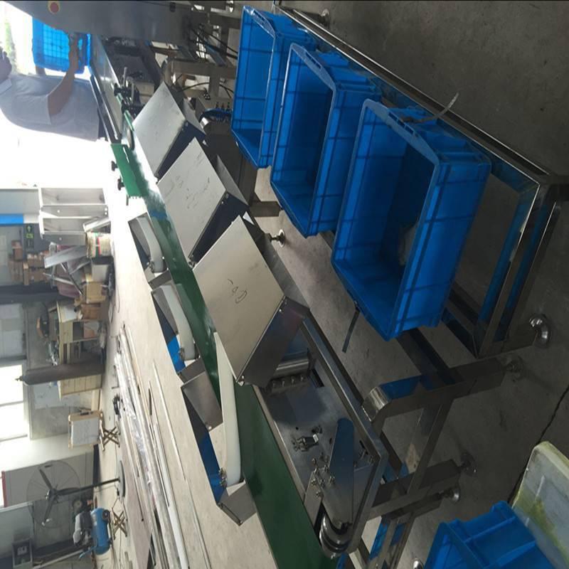 厂家热销螃蟹重量分选机 大虾分级机 自动分选大小重量检测机