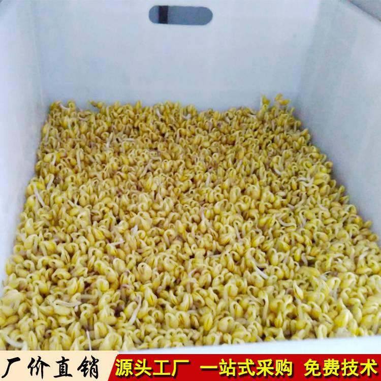 德州全自动生豆芽的机器无人看管智能商用绿豆芽机生产线多少钱一套