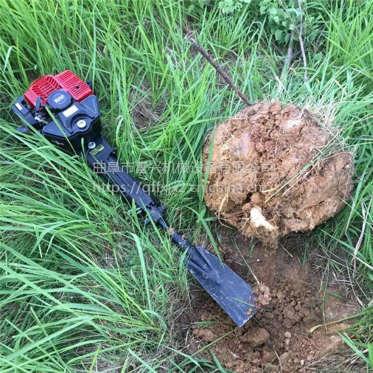 进口起树机 富兴批发苗木断根起苗机 古树移植起树断根机价格