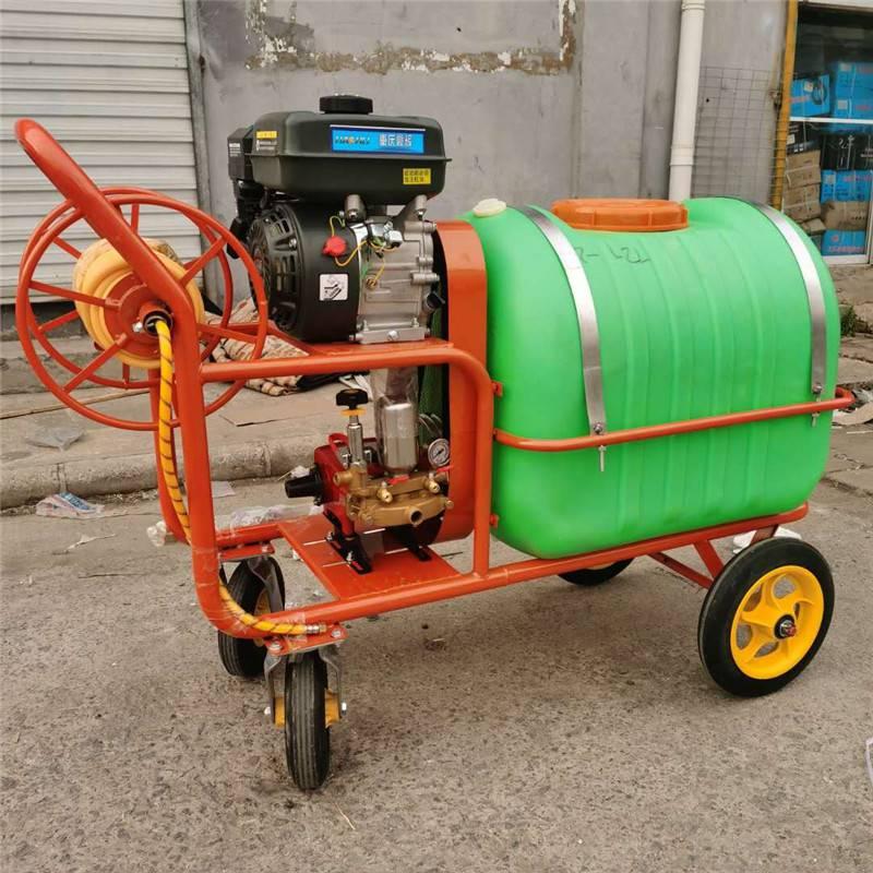 操作省力农用喷药机 雾化小型汽油打药机 手推式高压喷雾机富兴批发