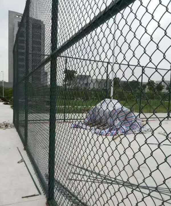 体育场低碳钢丝护栏 惠州焊接式围栏 广州球场隔离栏