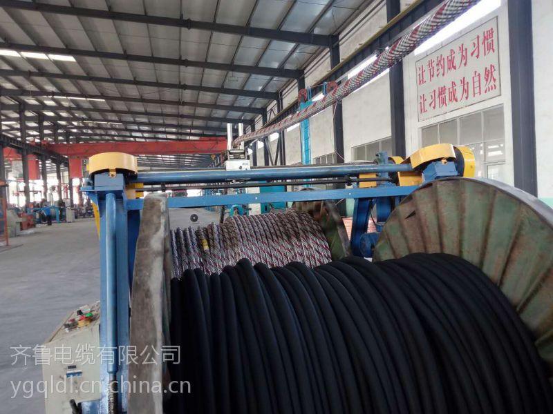 供应齐鲁牌裸铜线多芯交联塑料绝缘聚氯乙炔PVC护套矿用特缆 YJV-M 2*6.1