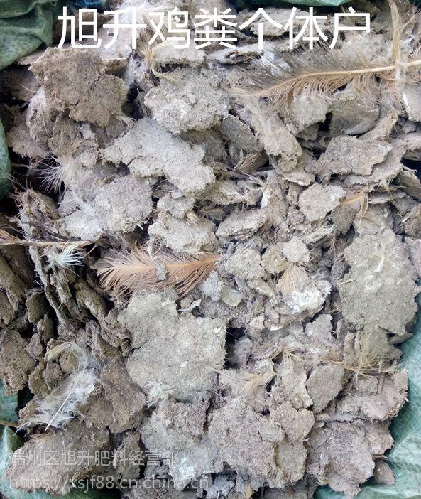 江西纯干无杂质鸡粪,江西纯干鸡粪有机肥价格人畜粪便批发