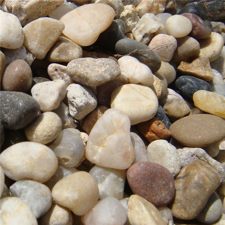 诚鑫厂家供应景观彩色天然鹅卵石 园艺铺路鹅卵石
